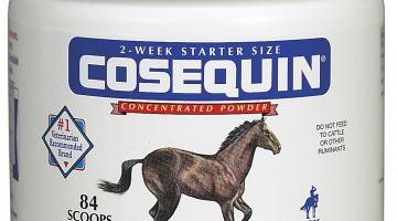 Cosequin - chondroitin, glycosaminoglycans (GAGs)