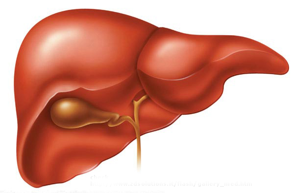 Viagra and liver disease